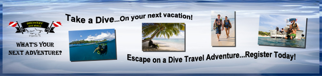 Travel with Discovery Dive World!